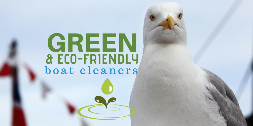 green eco friendly boat cleaners
