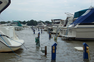 flooded marina