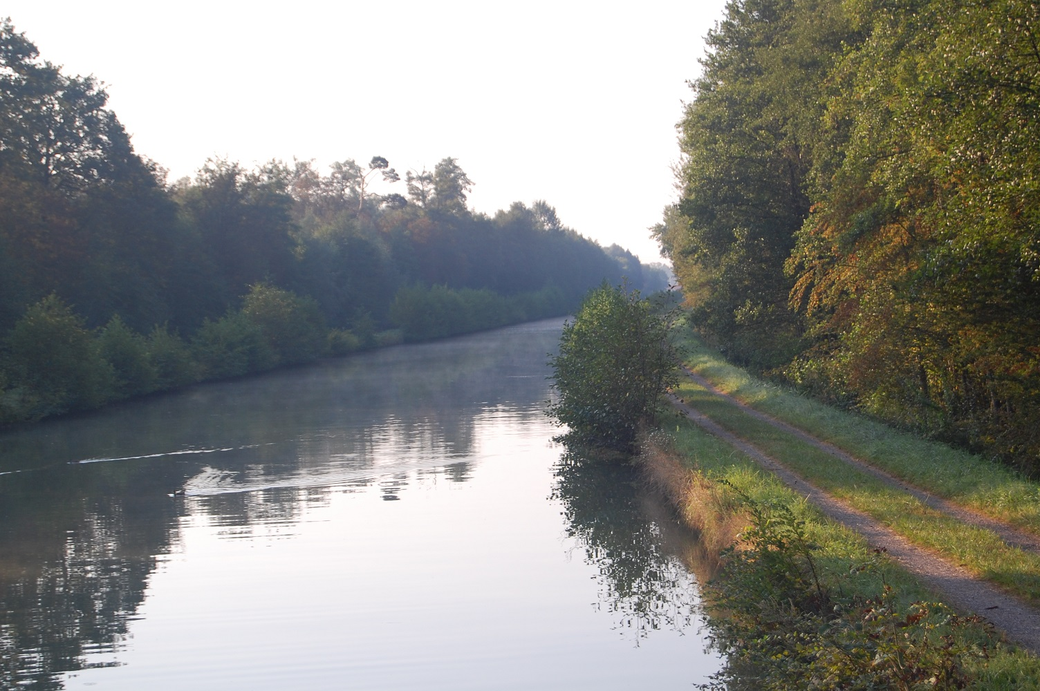 canal morning mist