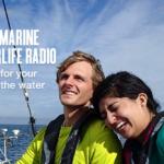 New Pandora Radio Boating Station: West Marine Waterlife Radio