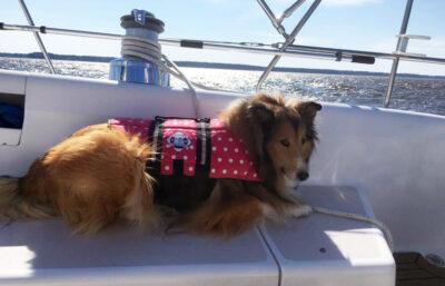 do boat safety