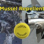 Keep Your Boat and Dock Zebra and Quagga Mussel Free